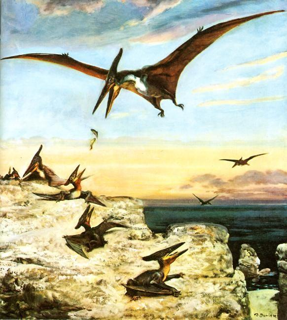 Pteranodon-painted-by-Zdenek-Burian.jpg