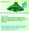 Pinterest UFO Contactee Billy Meier 057.jpg